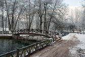 Bridge over river in winter season — Stock Photo