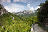 Footpath on mountain — Stock Photo