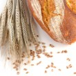 Bread and wheat — Stock Photo #16945523