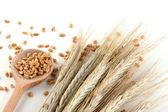 木のスプーンで小麦 — ストック写真