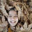 Smiling girl in the leaves - Stock fotografie