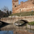 Castle Castelfranco Veneto — Stock Photo
