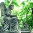 Stock Photo: Statue of angel on cemetery