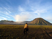 Jazda konna w pobliżu wulkanu — Zdjęcie stockowe