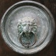 Gate knocker — Stock Photo