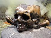 Human skull closeup — Stock Photo