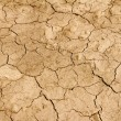 Stock Photo: Arid earth