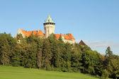 Castle in slovakia — Foto Stock