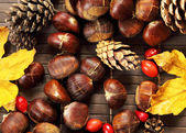 Autumn fruit decorations closeup — ストック写真