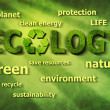 Stock Photo: Ecological words