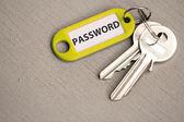 Sleutel met label wachtwoord — Stockfoto