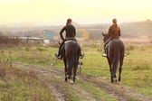 Women riding horses — Stock Photo