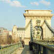 Stock Photo: Budapest bridge in daylight