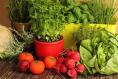 Homegrown herbs and vegetables — Stock Photo