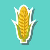 Corn with green leaves — Stock Vector