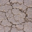 Dry cracked ground surface — Stock Photo