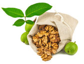 Sack of purified walnut and green walnut fruit — Stock Photo