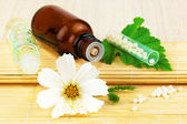 Homeopathic medication with flower and leaf — Stock Photo