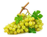 Bunch of grapes with green leaves — Stock Photo