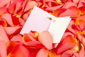 Card on petals of roses — Stock Photo