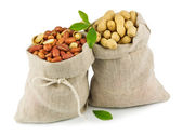 Sacks of peanut with green leaves — Stock Photo