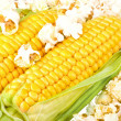 Maize and popcorn — Stock Photo