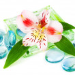 Clarity spa concept with flower — Stock Photo