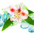 Stock Photo: Clarity spconcept with flower