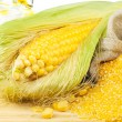 Composition from corn, maize flour and corn oil - Stock Photo