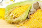 Composition from corn, maize flour and corn oil — Stock Photo