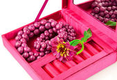 Open pink box with decoration — Stock Photo