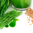 Постер, плакат: Wheatgrass juice with sprouted wheat and wheat
