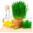 Постер, плакат: Wheatgrass juice with sprouted wheat and wheat germ oil on the m