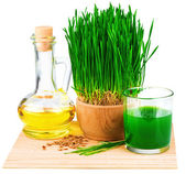 Wheatgrass juice with sprouted wheat and wheat germ oil on the m — Stock Photo