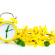 Stock Photo: Spring concept with clock and yellow flowers