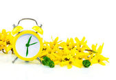 Spring concept with clock and yellow flowers — Stock Photo