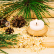 Candle, cones,oil, wooden sawdust, pine twigs and logs — Stock Photo