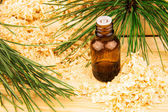Glass bottle of oil, wooden sawdust, pine branches and logs — Stock Photo