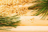 Wooden sawdust, pine branches and logs — Stock Photo