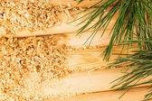 Wooden sawdust, logs and pine branches — Stock Photo