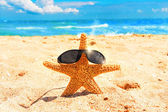 Starfish with glasses on sand at the beach — Stock Photo