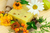 Natural soap, different  berries and flowers — Stock Photo