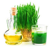 Wheatgrass juice with sprouted wheat and wheat germ oil — Stock Photo