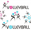 Volleyball icon — Stock Vector