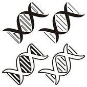 Dna molecule — Stock Vector