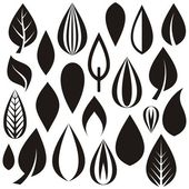 Blätter — Stockvektor