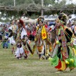 Stock Photo: Native AmericDancers