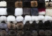 Kürk şapka — Stok fotoğraf