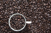 Coffe cup beans — Stock Photo