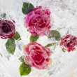 Rose — Stock Photo #22175389